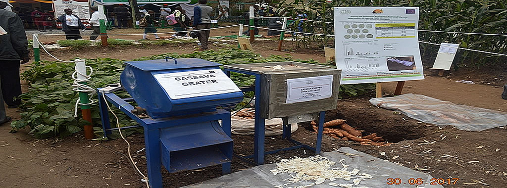 A cassava grater in the KALRO-Katumani at the ASK Machakos Show